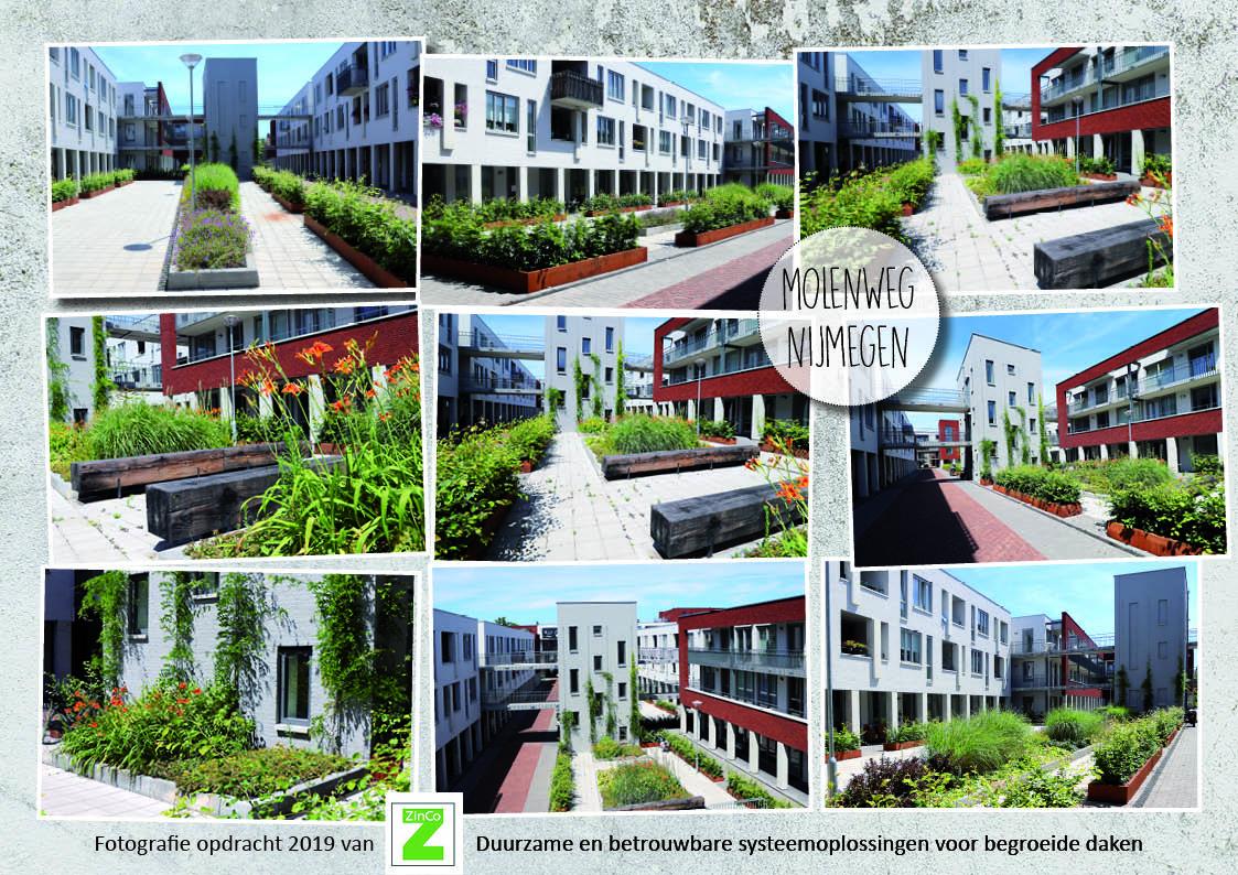 ZinCo - Fotografie Molenweg, Nijmegen