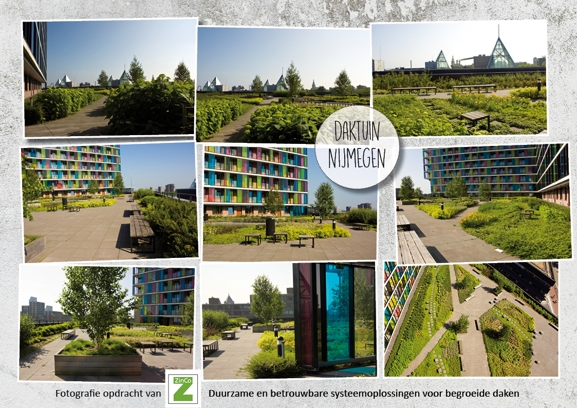 ZinCo - Fotografie Nijmegen