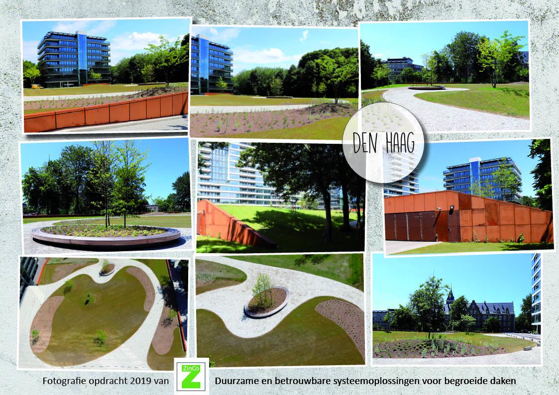 ZinCo - Fotografie, Oostduinlaan, Den Haag